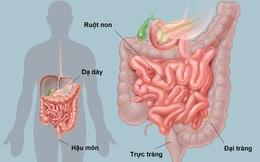 [Đọc nhanh] Danh y chỉ lý do gây bẩn đường ruột, cách làm sạch ruột ai cũng nên thực hiện