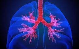 """Danh y nhắn bạn: Phổi khỏe bách bệnh tiêu, đừng bỏ lỡ """"thời điểm vàng"""" chăm sóc phổi"""