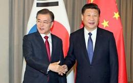 Trung-Hàn bình thường hóa quan hệ, nguyên thủ hai nước sẽ gặp mặt bên lề APEC tại Việt Nam