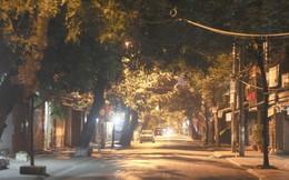 Khung cảnh khác lạ khu chợ Tam Bạc đất cảng Hải Phòng về đêm