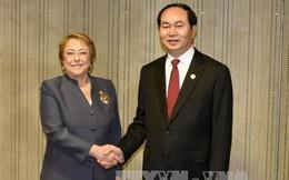 Làm sâu sắc hơn quan hệ Đối tác toàn diện Việt Nam-Chile
