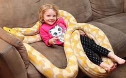 Bất chấp nguy hiểm, ông bố để con gái 3 tuổi chơi với trăn khổng lồ dài tới gần 6m