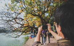 Sau những ngày mưa phùn ảm đạm, Hà Nội bỗng rực nắng dịu dàng xinh yêu đến lạ