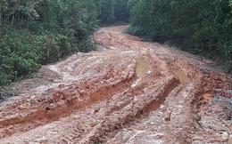 """Những con đường """"tắm bùn"""" ở Bố Trạch - Quảng Bình"""