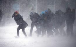 """Bão tuyết muộn bất thường ở Mỹ khiến New York, Washington """"đóng băng"""""""