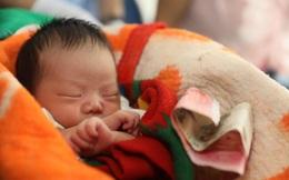 Ôm bé trẻ sơ sinh ngủ li bì mười mấy tiếng trên tàu, tội ác của cặp vợ chồng bị lật tẩy
