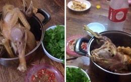 Ngao ngán trào lưu khoe cơm giá rẻ, bà mẹ cao tay khoe bữa ăn 5.000 đồng siêu chất