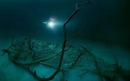 Vẻ đẹp kỳ bí của dòng sông ngầm đẹp nhất thế giới ở Mexico