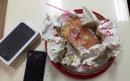 Tặng quà phải như anh: Chiếc iPhone 7 kẹp trong bánh kem 'không nhân dịp gì cả'