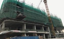 Cuối năm, có 1 tỷ trong tay mua ngay nhà tại dự án nào phía Tây Nam Hà Nội?