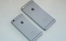 Cửa hàng nháo nhào xoay sở iPhone bán Tết