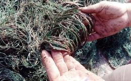 Xét nghiệm mẫu bùn 'lạ' bám vào lưới của nhiều ngư dân