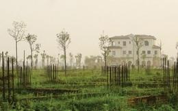 """Đại gia địa ốc Sudico: Hàng tồn kho như """"núi"""""""