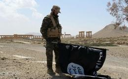 Quân đội Syria tuyên bố giành lại thành phố cổ Palmyra từ tay IS