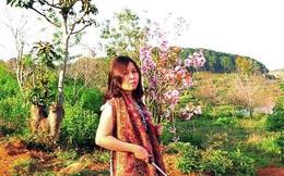 Nữ phó giám đốc sở bị 'tố' bẻ hoa anh đào: Lãnh đạo Bình Thuận lên tiếng