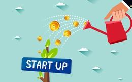 Ra mắt mạng lưới hỗ trợ phụ nữ khởi nghiệp, kinh doanh
