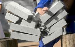 Vì sao các võ sư có thể chặt vỡ gạch mà không gãy tay? Hãy xem hình ảnh này, bạn sẽ hiểu ngay!
