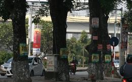 Treo quảng cáo trên cột điện, cây xanh bị phạt đến 10 triệu đồng