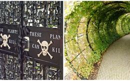 """Khám phá khu vườn """"chết người"""" nổi tiếng nhất thế giới, có thể mất mạng khi tham quan nơi đây"""