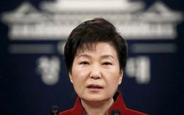 Nếu bị bắt, cựu Tổng thống Park Geun-hye được ở xà lim lớn hơn