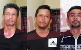 Khám phá băng nhóm trộm cắp xuyên lục địa Á, Âu và Nam Mỹ