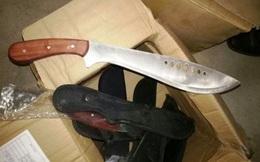 Bắt xe khách chở toàn dao kiếm, súng bắn điện vào TP HCM
