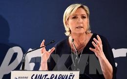 Bà Marine Le Pen trở thành chính khách được chú ý nhất tại Mỹ