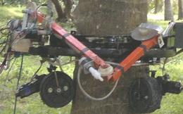Các sinh viên Ấn Độ chế tạo thành công robot hái dừa, hái nhanh hơn thợ con người tới 20 lần