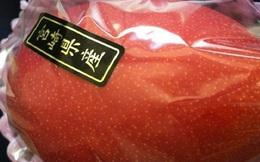 Quả xoài 1,7 triệu, vải thiều 400 ngàn/12 quả: Xót lòng dân Việt