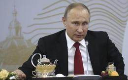 """Tổng thống Putin phủ nhận """"có quan hệ đặc biệt"""" với Tổng thống Donald Trump"""
