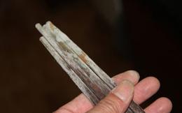Thực hư hiểm họa ung thư từ việc dùng đũa gỗ mốc