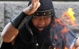 Chuyện kể về Ninja cuối cùng còn sống sót trong thế giới hiện đại