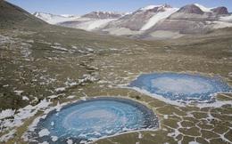 """Đây là nơi """"đầu tiên"""" trên hành tinh không có sự sống của vi khuẩn"""