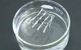 Các nhà khoa học vừa phát minh ra một loại bo mạch có khả năng phân hủy trong nhiệt độ thấp không khác gì phim viễn tưởng