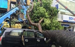 Hà Nội trực 24/24 ứng phó với mưa lũ và bão số 2
