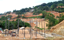 Đà Nẵng: Xây kè, đào mương để chống sạt lở khẩn cấp trên núi Sơn Trà