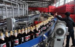 Một Tổng Công ty lãi nhiều chục tỷ đồng từ bán bia mỗi ngày