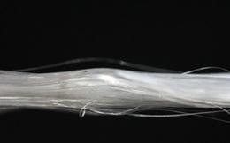 Cùng khám phá thế hệ tơ nhện nhân tạo mới: bền hơn thép, và 98% làm từ ...nước