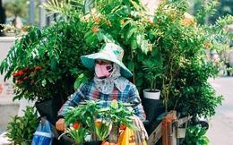 """Trên đường phố Sài Gòn, có những người hàng chục năm chở theo một """"chợ xanh"""" sau yên xe máy"""