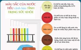 Màu sắc của nước tiểu cảnh báo tình trạng sức khỏe của bạn