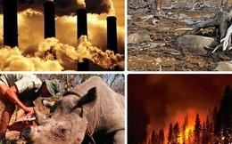 Bạn tin không, cuộc Đại Tuyệt chủng lần thứ 6 của Trái đất được dự đoán diễn ra vào năm 2100