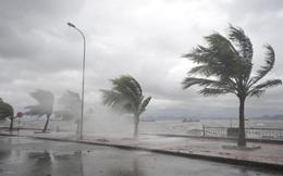 Áp thấp nhiệt đới vừa xuất hiện trên Biển Đông