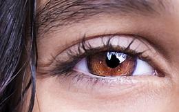 Đây là lý do mắt nâu là màu mắt sở hữu tính cách đáng quý nhất thế giới