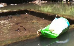 Đổ thuốc trừ sâu vào bồn nước để sát hại cả nhà người tình