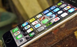 """Dùng iPhone nhất định phải biết làm điều này để xem iPhone còn """"khỏe"""" đến đâu"""
