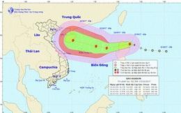 Đà Nẵng ra Công điện khẩn ứng phó bão số 11