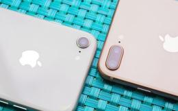 iPhone 9 còn lâu mới ra mắt nhưng tin đồn về nó thì đã xuất hiện rồi!