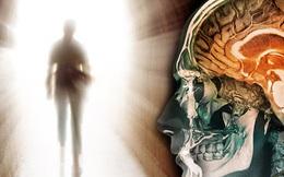 Nghiên cứu đáng sợ nhất về cái chết: Tâm trí vẫn hoạt động kể cả khi chúng ta đã chết