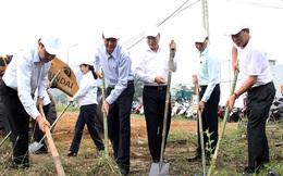 Lãnh đạo Đà Nẵng làm vệ sinh môi trường hưởng ứng APEC