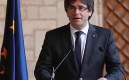 Diễn biến Catalonia: Ông Puigdemont có thể đang xin tị nạn tại Bỉ 